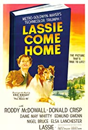Lassie Come Home (1943) Poster - Movie Forum, Cast, Reviews