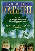 Primary image for Under the Domim Tree