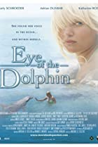 Image of Eye of the Dolphin