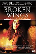 Image of Broken Wings