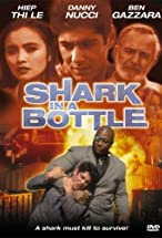 Primary image for Shark in a Bottle