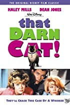 Image of That Darn Cat!