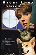 Image of The Wonderful World of Disney: Murder She Purred: A Mrs. Murphy Mystery
