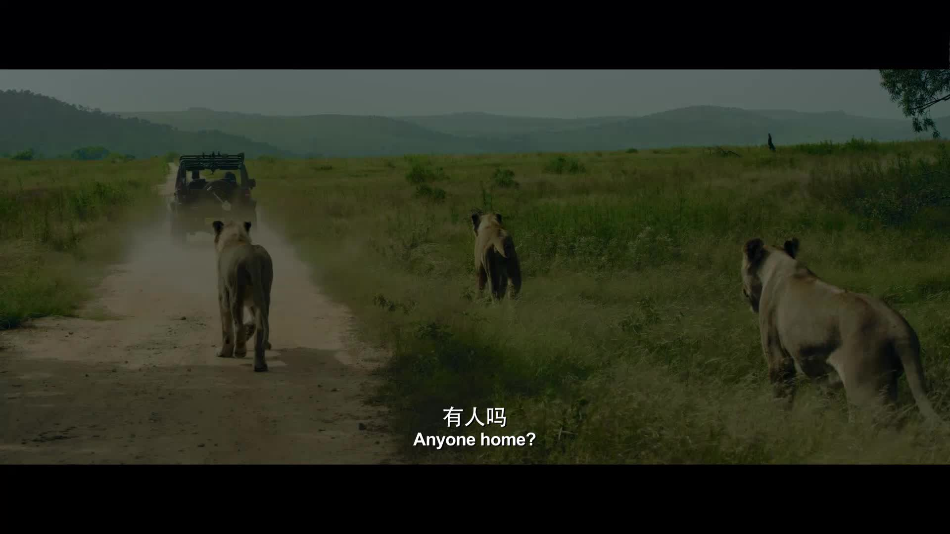 Wolf Warrior 2 movie mp4 download