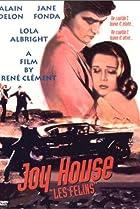 Image of Joy House