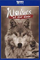 Image of Wolves at Our Door