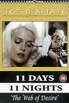 Image of 11 Days, 11 Nights 2