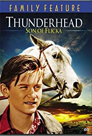 Thunderhead - Son of Flicka (1945) Poster - Movie Forum, Cast, Reviews