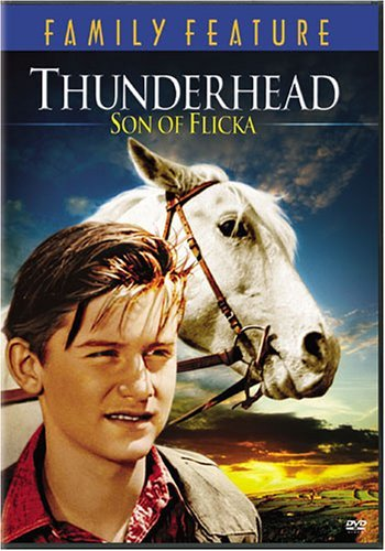 image Thunderhead – Son of Flicka Watch Full Movie Free Online