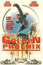Image of Operation Golden Phoenix