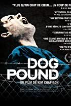 Image of Dog Pound