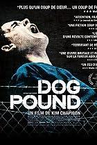 Image of Dog Pound