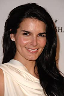 Angie Harmon Picture