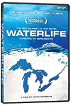 Image of Waterlife