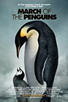 Image of March of the Penguins
