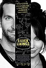 Silver Linings Playbook(2012)