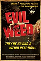 Image of Evil Weed