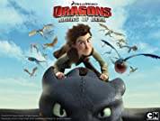 DreamWorks Dragons - Riders of Berk poster
