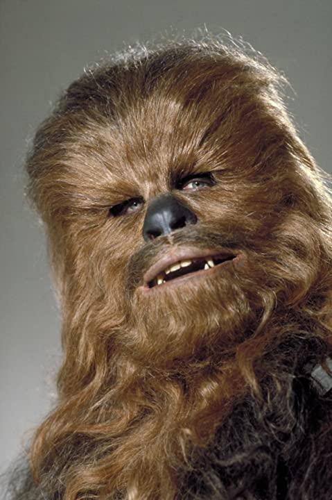 Peter Mayhew in Star Wars: Episode IV - A New Hope (1977)