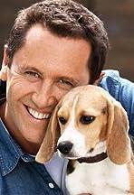 Celebrity Dog School
