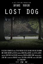Primary image for Lost Dog