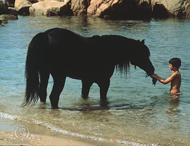 Kelly Reno in The Black Stallion (1979)