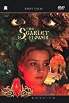 Image of The Scarlet Flower