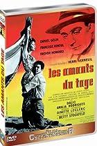 Image of Les amants du Tage