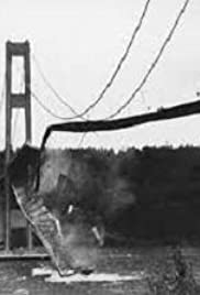 Tacoma Narrows Bridge Collapse (1940) Poster - Movie Forum, Cast, Reviews