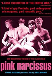 Pink Narcissus Poster