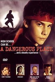 A Dangerous Place(1994) Poster - Movie Forum, Cast, Reviews