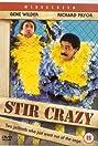 Stir Crazy (1980) Poster