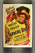 Image of Apache Rose
