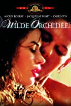 Image of Wild Orchid