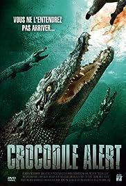 Crocodile Alert Poster