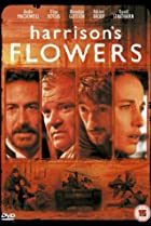 Harrison's Flowers (2000) Poster
