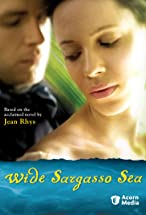 Primary image for Wide Sargasso Sea