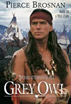 Primary image for Grey Owl
