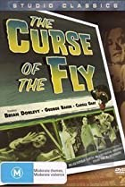 Image of Curse of the Fly