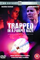 Image of Trapped in a Purple Haze