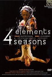 4 Elemente - 4 Jahreszeiten Poster
