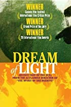 Image of Dream of Light