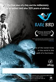 Rare Bird Poster