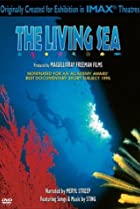 Image of The Living Sea