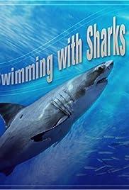 Alan Greenspan/Swimming with Sharks Poster