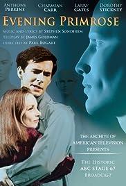 Evening Primrose(1966) Poster - Movie Forum, Cast, Reviews