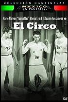 Image of El circo