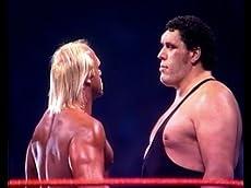 WWE: Wrestlemania: Wrestlemania 27