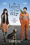 A Bird of the Air Movie Review