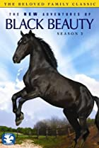 Image of The New Adventures of Black Beauty